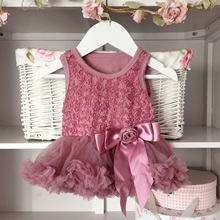 Dusky Ornate Pink Baby Belle Tutu Dress